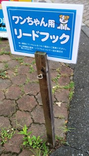 20160810.jpg